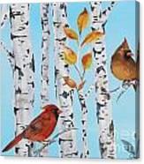 Cardinals Among The Birch-d Canvas Print