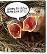Cardinals Birthday Card Canvas Print