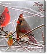 Cardinals - Male And Female - Img_003card Canvas Print