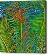 Caribbean Coconuts Canvas Print