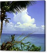 Caribbean Day Canvas Print