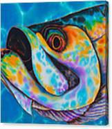 Caribbean Tarpon Fish Canvas Print