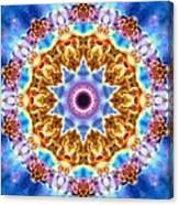 Carina Nebula I Canvas Print