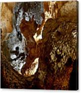 Carlsbad Caverns #1 Canvas Print