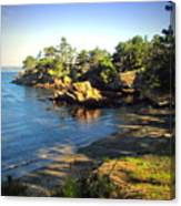Carmel Meadows Beach At Point Lobos Canvas Print