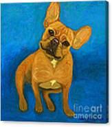 Carmen French Bulldog Canvas Print