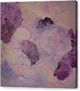 Carnations Floating Canvas Print