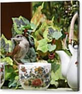 Carolina Wren And Tea Cups Canvas Print