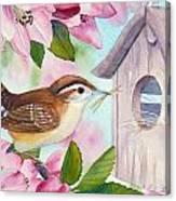 Carolina Wren In Springtime Canvas Print