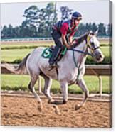 Carousel Horse 3 Canvas Print