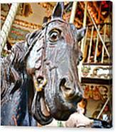 Carousel Horse Head Canvas Print