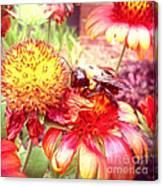 Carpenter Bee No. 4 Canvas Print