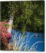 Carpenters Park 4 Canvas Print