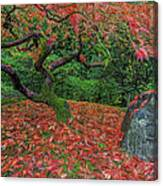 Carpet Of Fall Colors In Portland Japanese Garden Canvas Print