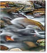 Carreck Creek Cascades Canvas Print