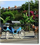 Carriage Tours New Orleans Canvas Print