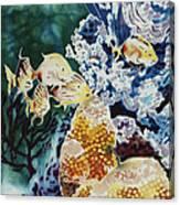 Carribean Currents Poster Canvas Print