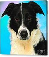 Cartoon Collection No 3 Life With A Border Collie In Usa Canvas Print