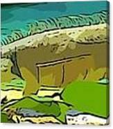Cartoon Lizard Canvas Print