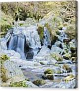 Cascade And Ice Canvas Print