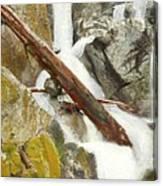 Cascade Creek Falls Canvas Print