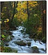 Cascades On The Motor Nature Trail Canvas Print