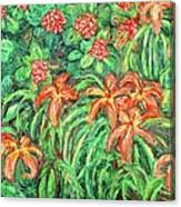 Cascading Day Lilies Canvas Print