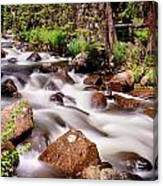 Cascading Rocky Mountain Forest Creek Canvas Print