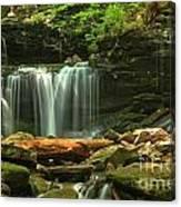 Cascading Through Glen Leigh Canvas Print