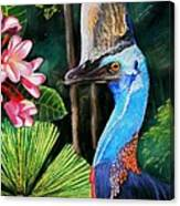 Cassowary- King Of The Rainforest Canvas Print