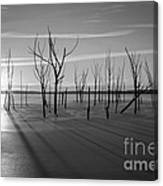 Casting Shadows Bw Canvas Print