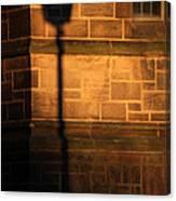 Casting Shadows Canvas Print
