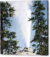 Castle Geyser Yellowstone Np Canvas Print