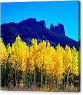 Autumn Castle Rock Aspens Canvas Print