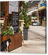 Cat And Restaurant Concarneau Brittany France Canvas Print
