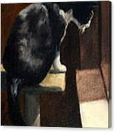 Cat At A Window With A View Canvas Print