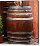 Cat Guarding A Wine Barrel In Alsace Canvas Print
