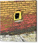 Cat In A Hole In A Wall Canvas Print