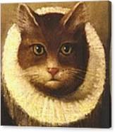Cat In A Ruff Canvas Print