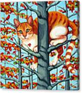 Orange Cat In Tree Autumn Fall Colors Canvas Print