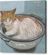 Cat In Casserole  Canvas Print