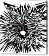Cat Iwan Canvas Print