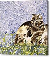 Cat Mint Wc On Paper Canvas Print