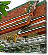Cat On A Wat Po Roof In Bangkok-thailand Canvas Print