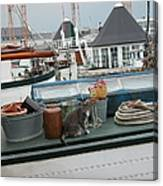 Cat On Boat Canvas Print