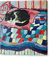 Cat On Pink  Canvas Print