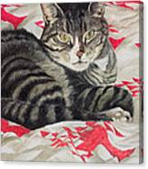 Cat On Quilt  Canvas Print