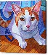 Cat Out Of The Bag Canvas Print