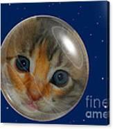 Cat Planet Canvas Print