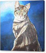 Cat Profile Canvas Print